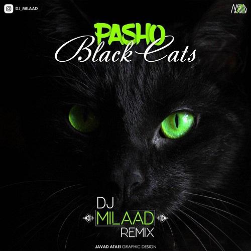 آهنگ جدید بلک کتس - پاشو (ریمیکس)