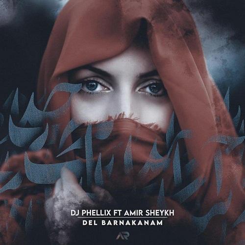 آهنگ جدید دیجی فلیکس و امیر شیخ - دل بر نَکنم