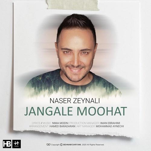 آهنگ جدید ناصر زینلی - جنگل موهات