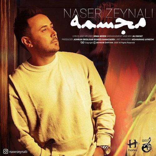 آهنگ جدید ناصر زینلی - مجسمه